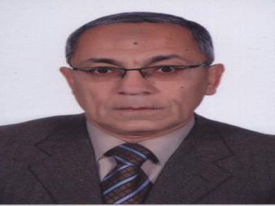 Baher Abdel Khalek Mahmoud Effat